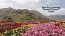 best iran travel agency