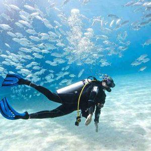 Persian Gulf Diving