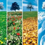 Iranroyalholiday the country of four seasons
