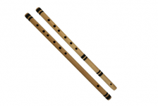 INSTRUMENT OF THE REED