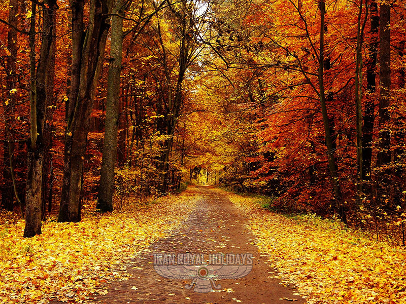 most beautiful autumn forests of Iran